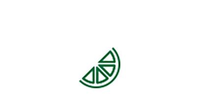 Cataract risk factor nutritional deficiency orange slice icon